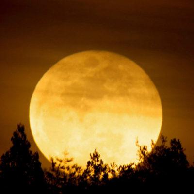 黄金色に輝く夜の満月